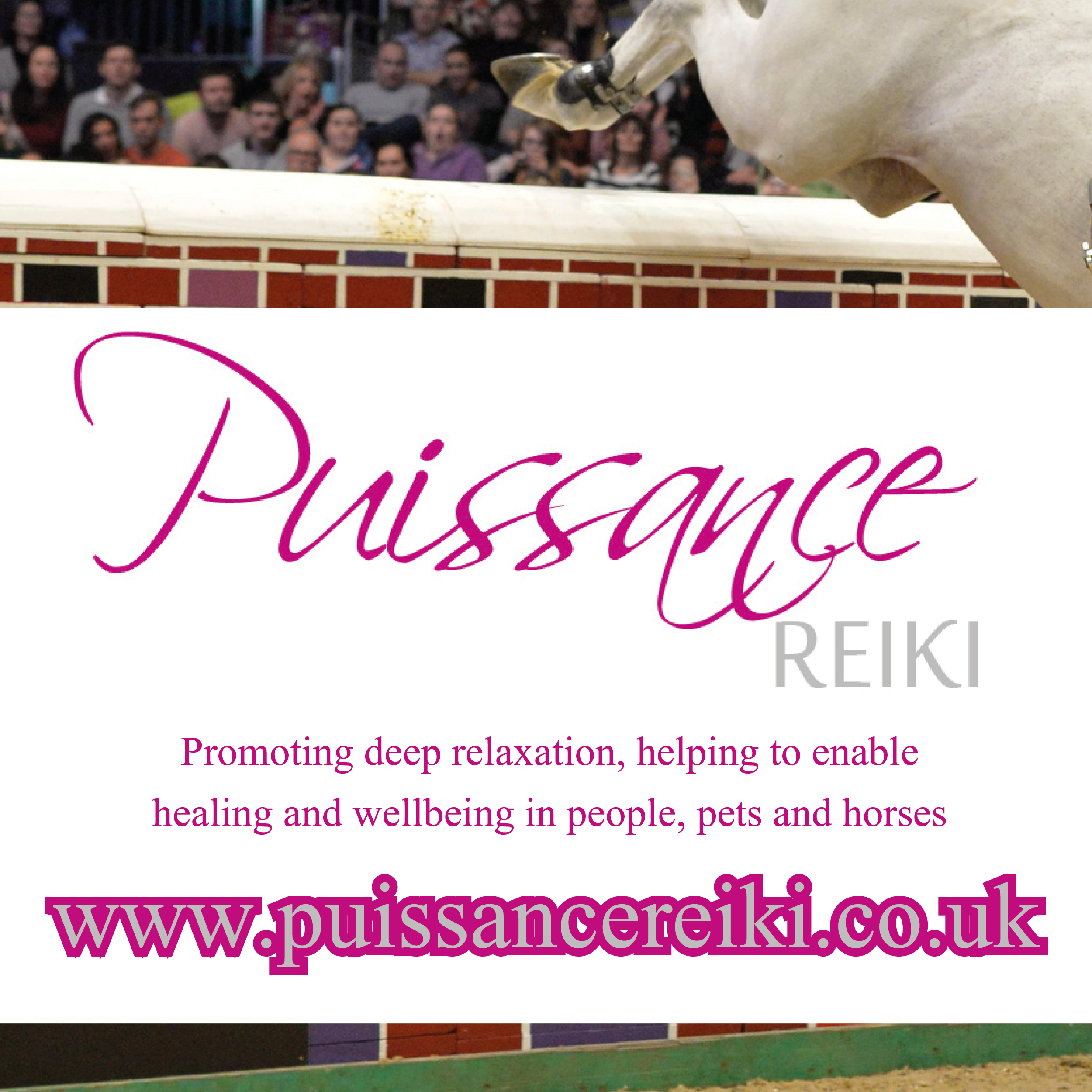 Pussiance Reiki Available throughout the Northwest for Horse, Animal and Human