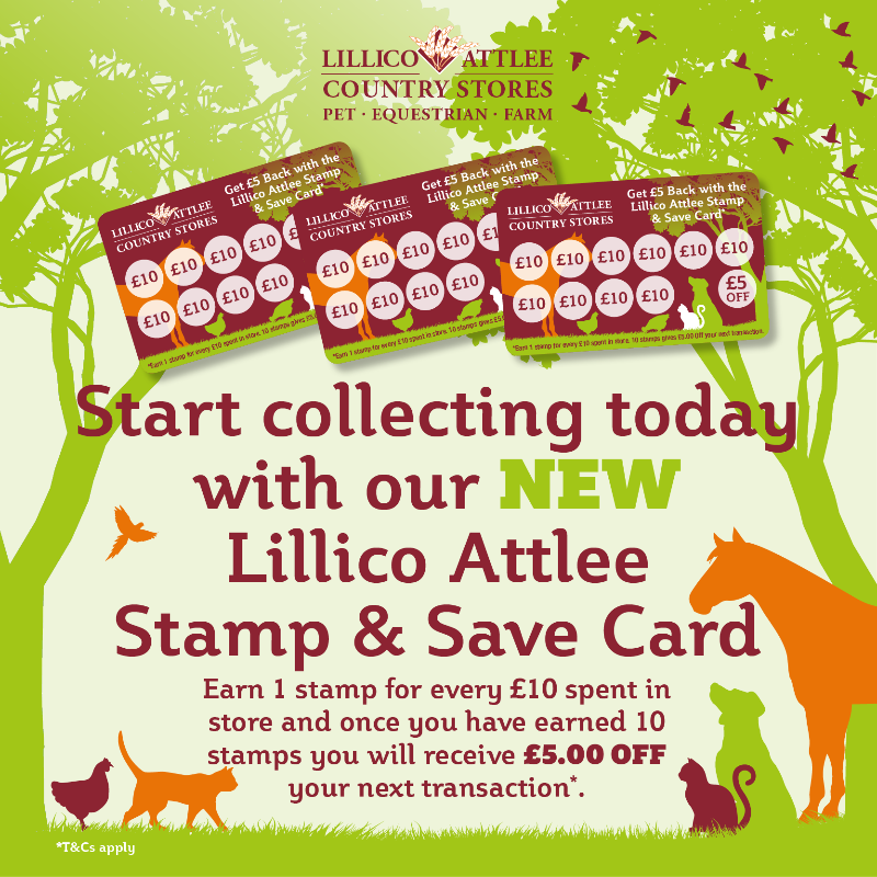 Lillico-Stamp-Save-FB-800x800px