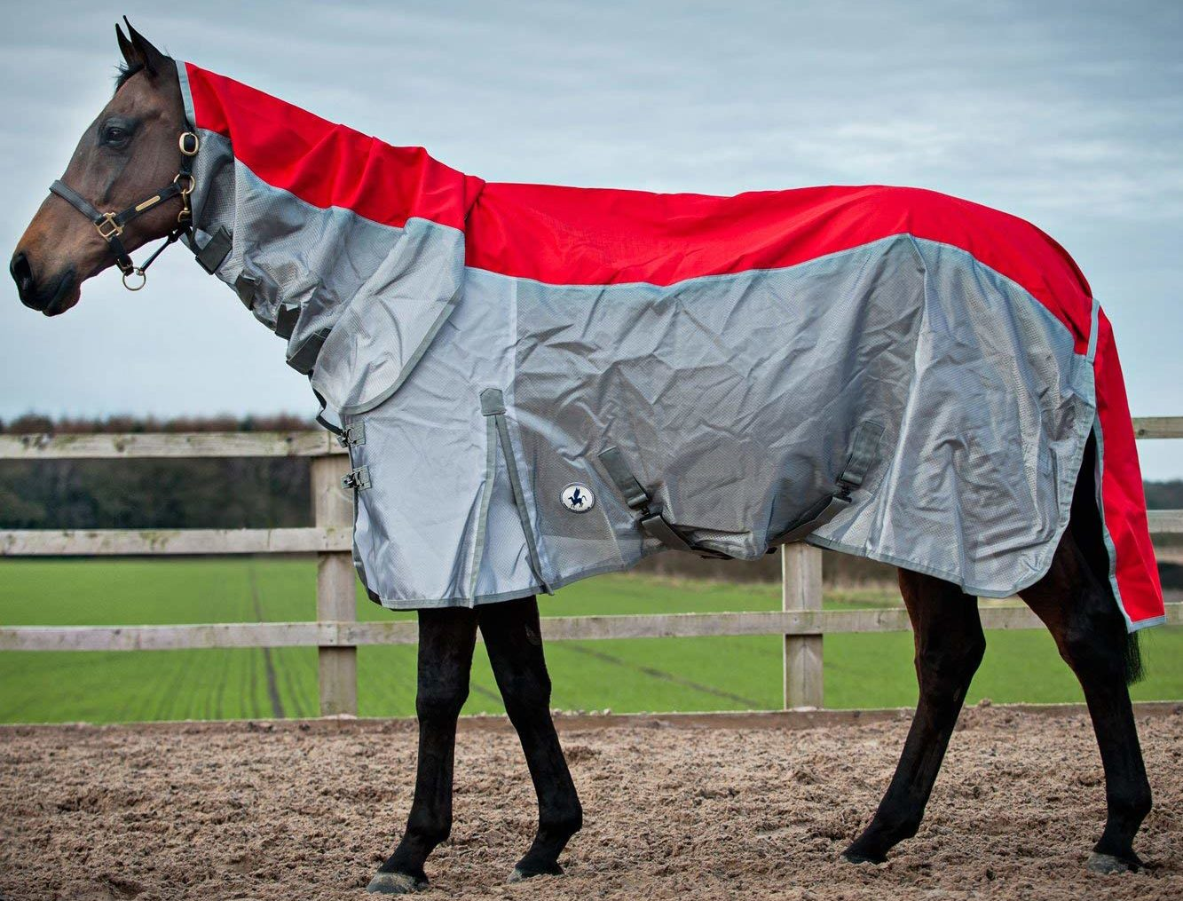 Best Selling Lightweight Turnout Rugs