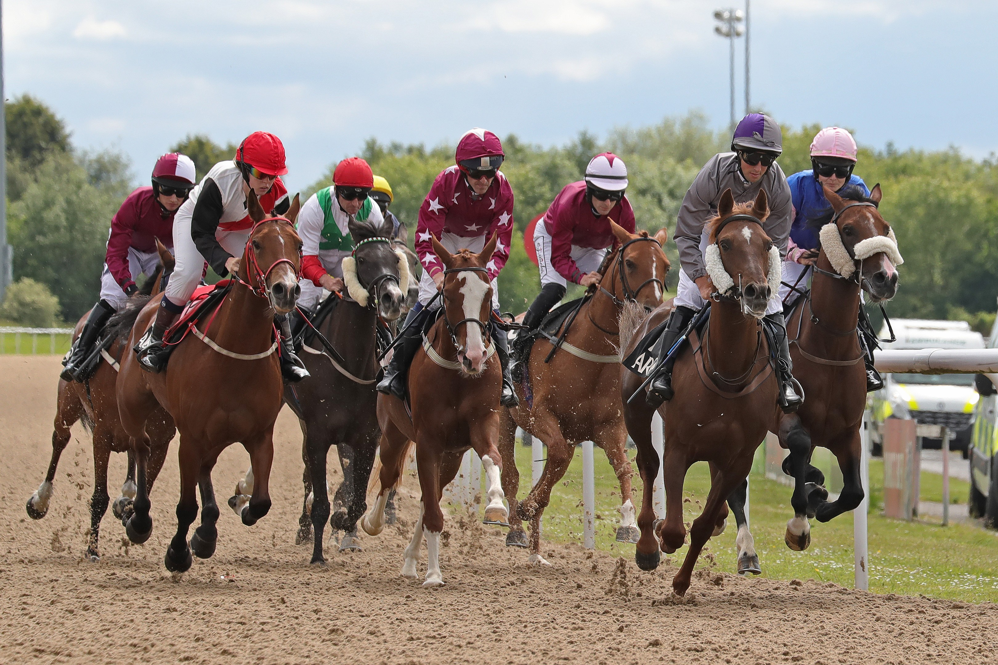 A Brief Overview Of Arabian Racing In The Uk Everything Horse
